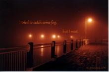 St.John_New_Brunswick_catch_fog