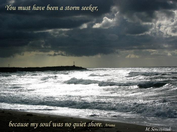 storm_seeker_sencyszak