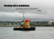 theodore_tugboat_halifax-2