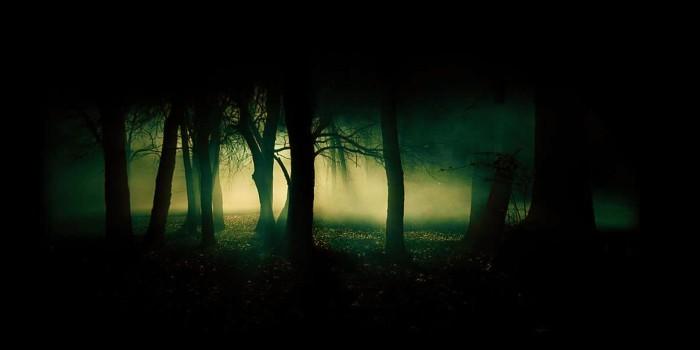 dark_forest_on_friday_13-2